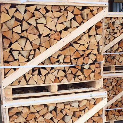 logshornbeam